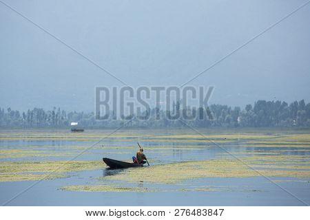 Traditional shikara boat on the Dal lake in Srinagar, Kashmir, India.
