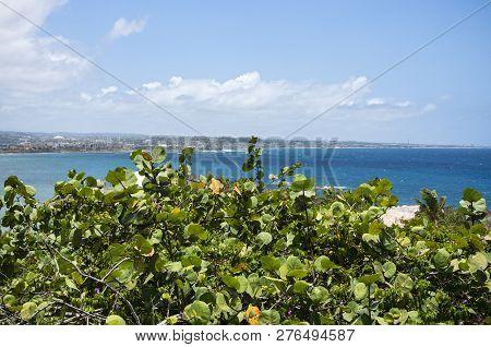 Atlantic Ocean Off North Coast Of Puerto Rico With Arecibo On Horizon