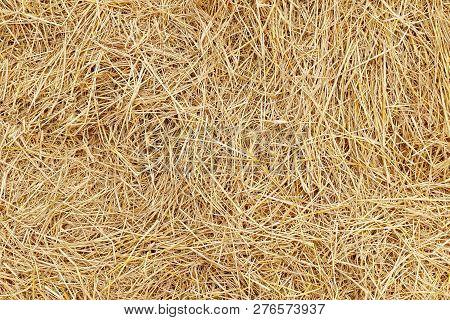 Straw, Dry Straw, Hay Straw Yellow Background, Hay Straw Texture