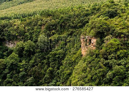 Karkloof falls surrounded by vegetation and forest in the Natal Midlands, South Africa. poster