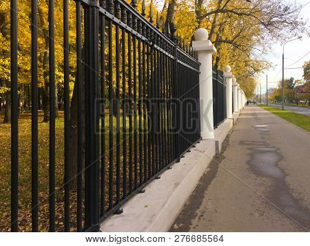 City Decorative Metal Fence In A Public Autumn Park. Alley With Yellow Foliage On Trees Along The Au