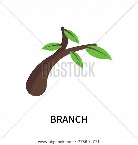 Branch Icon Isolated On White Background. Branch Icon Simple Sign. Branch Icon Trendy And Modern Sym