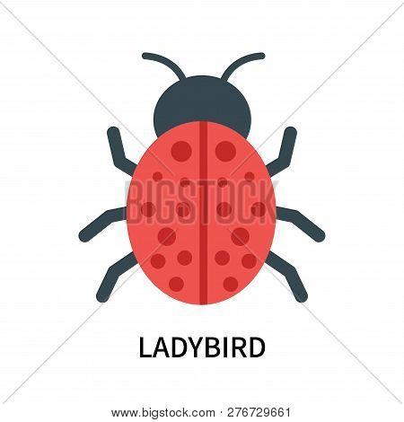 Ladybird Icon Isolated On White Background. Ladybird Icon Simple Sign. Ladybird Icon Trendy And Mode