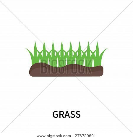 Grass Icon Isolated On White Background. Grass Icon Simple Sign. Grass Icon Trendy And Modern Symbol