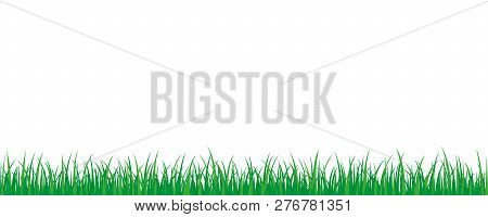 Green Grass Meadow Border Vector Pattern Isoladet On A White Background Vector Illustration Eps10