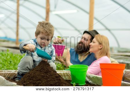 Rich Land. Land Rich With Fertile. Rich Land For Growing Plants. Family In Greenhouse Work With Rich