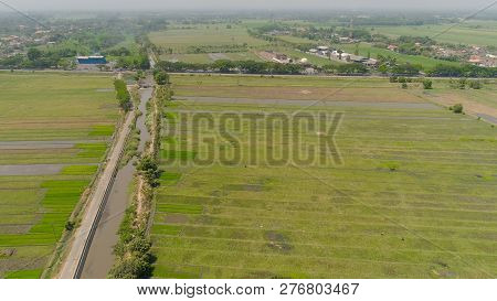 Aerial View Agricultural Land With Sown Green, Rice Fields In Countryside. Farmland With Agricultura