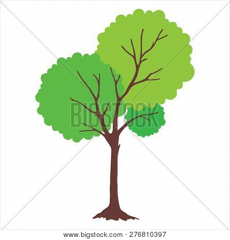 Tree With Green Leaves. Tree Icon Isolated On White Background. Tree Icon Simple Sign. Tree Icon Tre