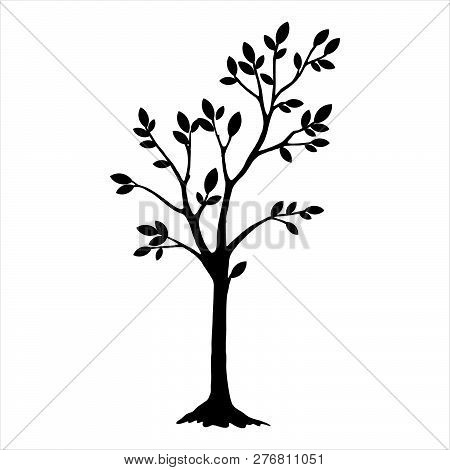 Black Silhouette Tree With Leaves. Tree Icon Silhouette   Isolated On White Background. Tree Icon Si
