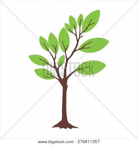 Tree With Leaves. Tree Icon Isolated On White Background. Tree Icon Simple Sign. Tree Icon Trendy An