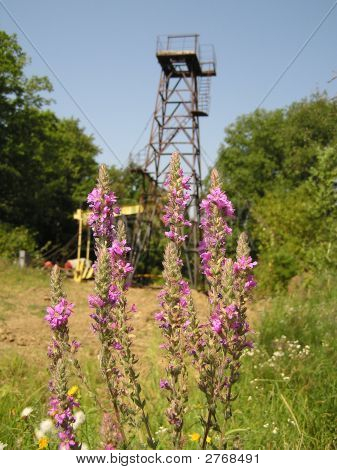 Oil derrick in a field of wild flowers. Krasnodar Territory. Russia. poster