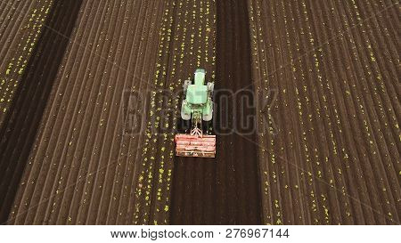 Aerial View Tractor Hilling Potatoes With Disc Hiller. Farmer In Tractor Preparing Land With Seedbed