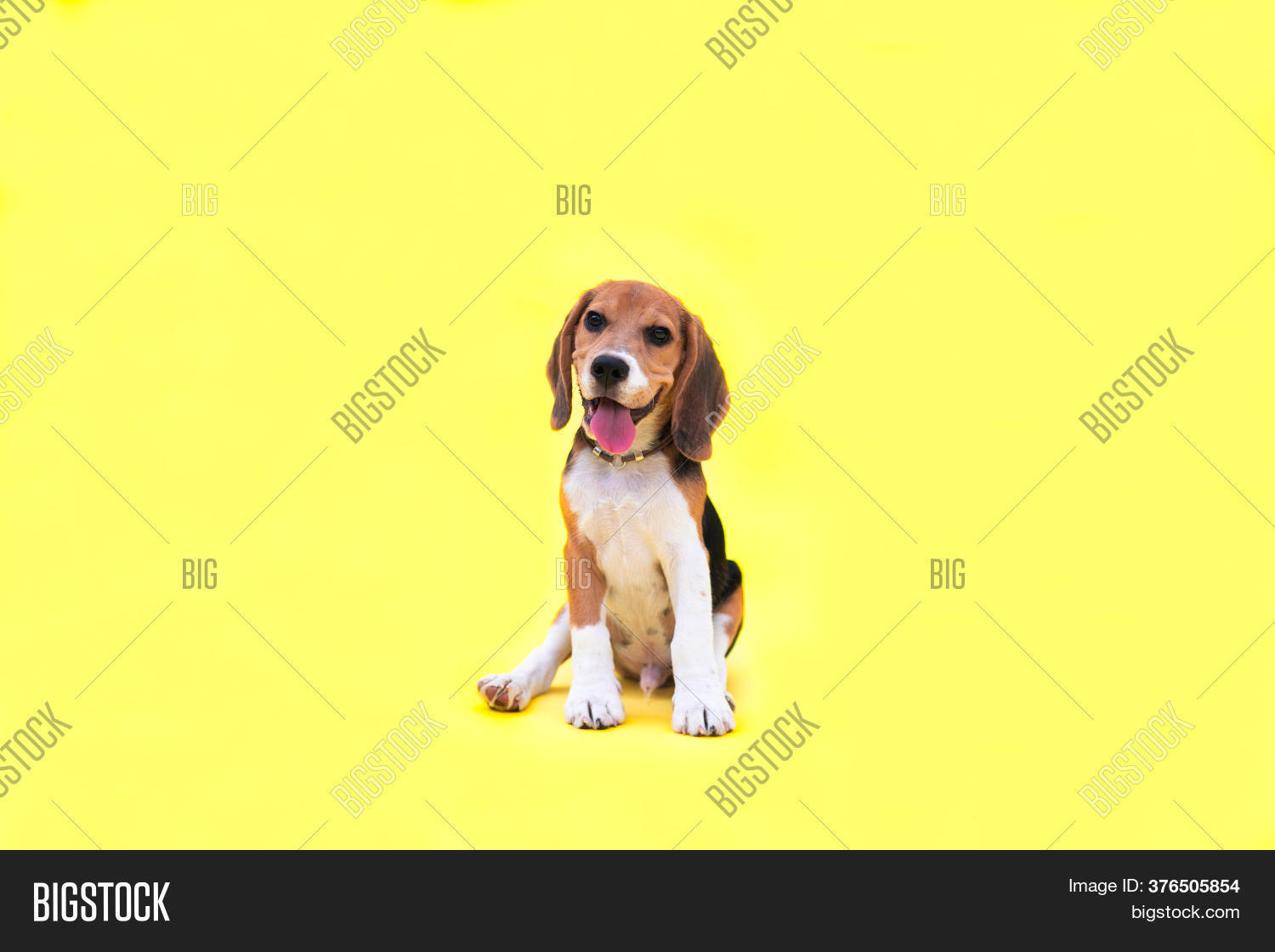 Portrait Red Young Image Photo Free Trial Bigstock