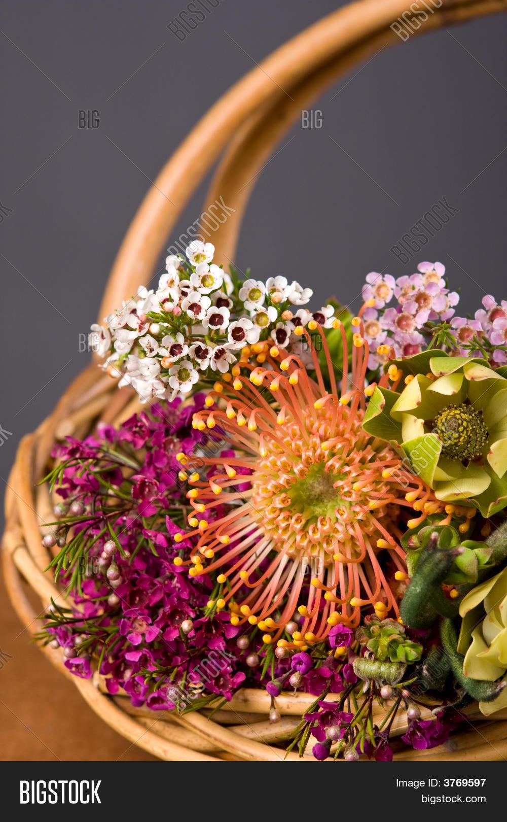 Australian native image photo free trial bigstock australian native flower bouquet izmirmasajfo