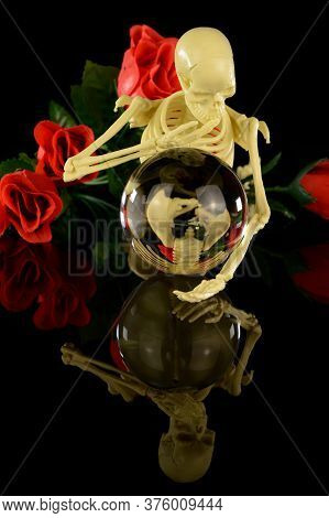 A Skeleton Reflects Into The Crystal Ball To See Life A Little More Clearly.