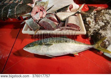 Fresh Fish. Yellow Fin Tuna. Whole Yellow Fin Tuna Fish for sale at an open market.