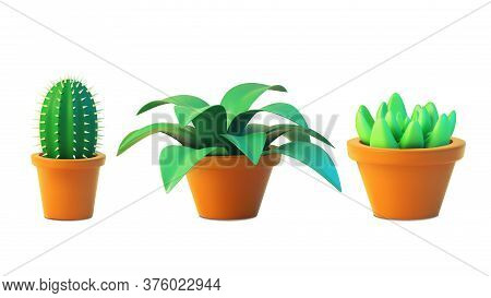 Vector Set Houseplant Cactus And Succulent In Pot, Realistic Tree Front View. 3d Illustration Green
