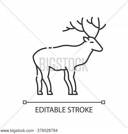Deer Pixel Perfect Linear Icon. Animal With Beautiful Antlers. Forest Wildlife Thin Line Customizabl