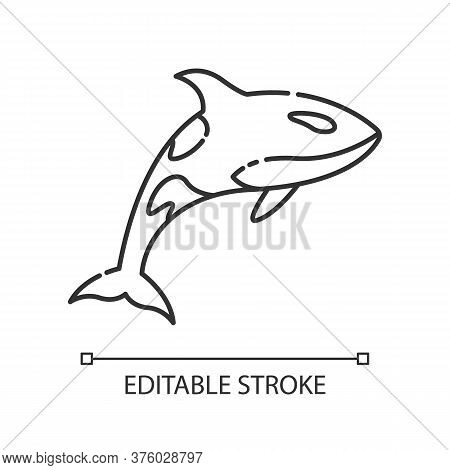 Orca Pixel Perfect Linear Icon. Dangerous Swimming Animal, Sea Life, Ocean Fauna Thin Line Customiza
