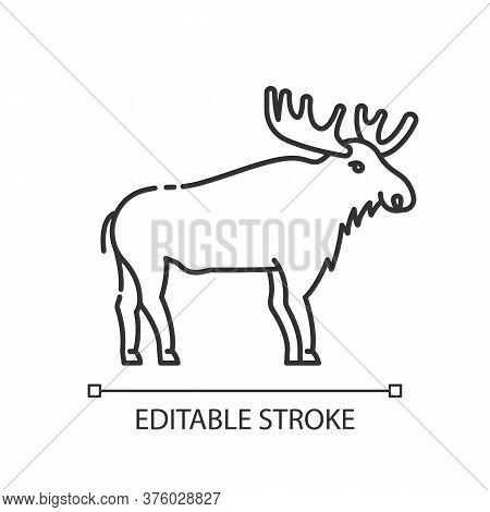 Elk Pixel Perfect Linear Icon. Animal With Large Antlers. American Forest Wildlife Thin Line Customi