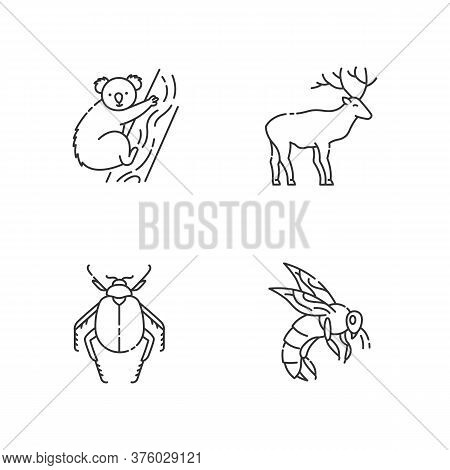 Mammals And Insects Pixel Perfect Linear Icons Set. Koala, Forest Deer, Scarab Beetle And Honeybee C