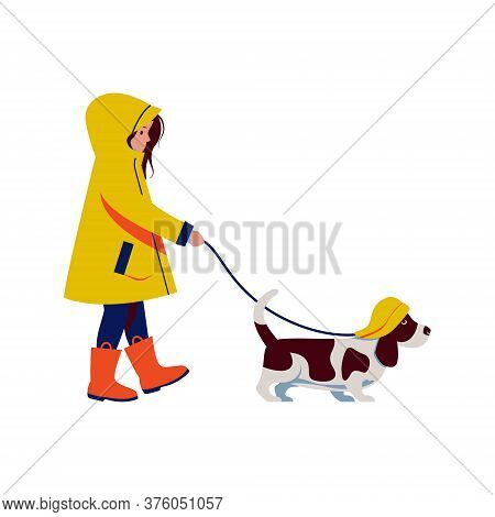 Girl In Yellow Raincoat And Rubber Boots Has Walking With Dog Basset Hound In Rain Southwest Hat. Ve