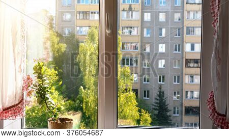 City Multi-storey Grey And Brown Dwelling Building And High Green Trees Outside Plastic Window With