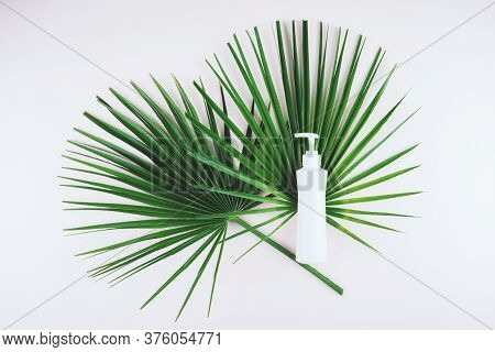 Bottle Of White Cream Lotion On Green Palm Leaf, Natural Skin Care Spa Concept.