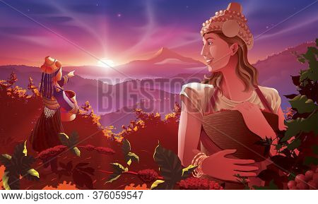 Vector Illustration Of The Western Lady Digital Nomad Helping A Tribe Lady Harvesting The Coffee Bea