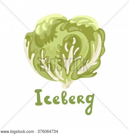 Iceberg Lettuce. Vector Organic Cute Food Illustration. Good For Teaching Children The English Alpha