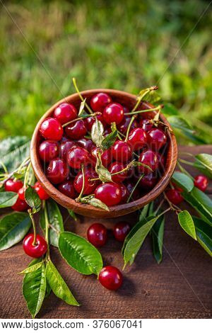 Ripe Sour Cherries In Summer Time In A Wooden Bowl
