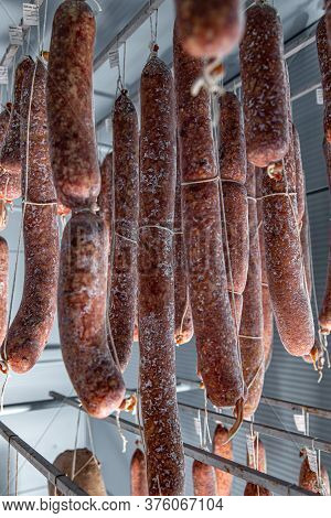 Tasty Salami With White Mold. Salami Hanging In The Warehouse