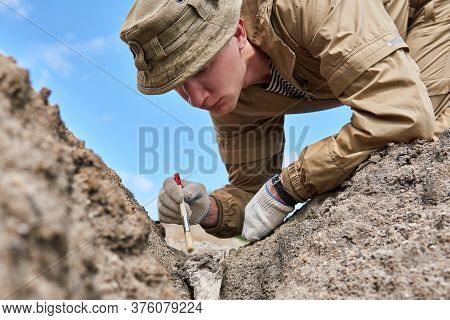 Man Archaeologist Or Paleontologist Gently Cleans The Fossil Bone Found In The Ground With A Brush