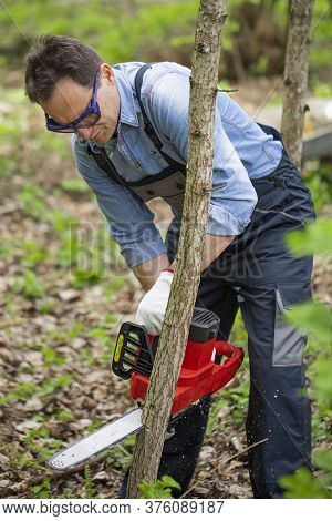 Close Up View Of Axeman Lumberjack In Working Uniform Sawing Young Tree Trunk With Electric Saw Chai