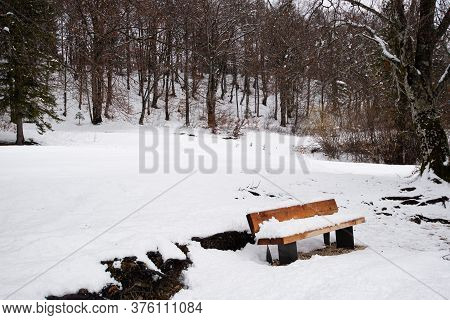 Snow Covered Wooden Bench In A Beautiful Winter Nature By The Forest.