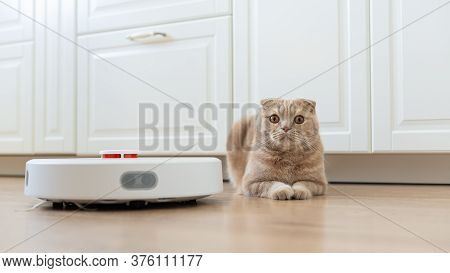 Pet Friendly Smart Vacuum Cleaner. Cat Is Lying On The Wooden Floor Near The Robotic Vacuum Cleaner.