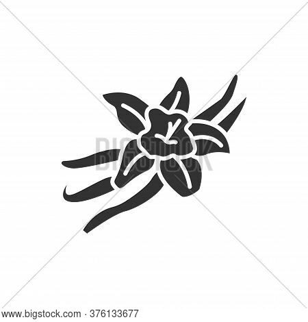 Vanilla Pods And Flower With Caption Black Glyph Icon. , Seasoning. Cooking Ingredient. Pictogram Fo