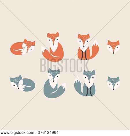 Red And Polar Fox Kids Cartoon. Colorful Cute Foxes Character Set. Children Hand Drawn Style.