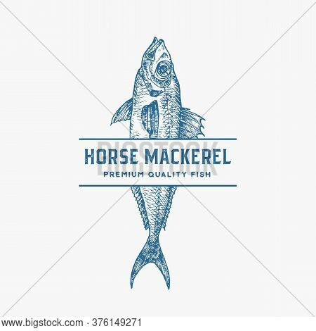 Premium Quality Horse Mackerel. Abstract Vector Sign, Symbol Or Logo Template. Hand Drawn Fish With