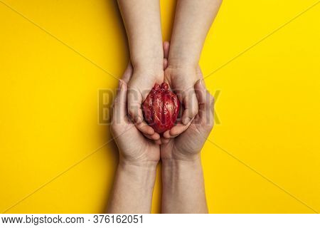 Saving Life Is Heart Transplant. Hands Hold Organ On Yellow Background, Concept.