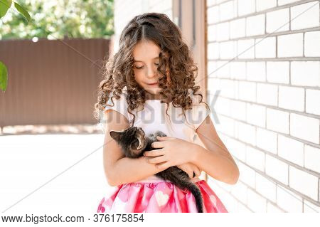Cute Little Girl With Curls Looks At The Kitten In Her Arms With Love