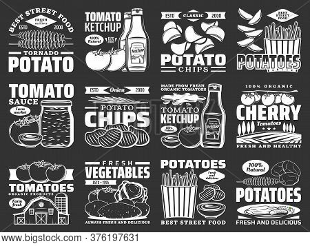 Potato Food Monochrome Icons, Tomato Products And Snacks, Vector Farm Vegetables. Potato Chips, Toma