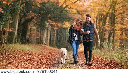Loving Couple Walking With Pet Golden Retriever Dog Along Autumn Woodland Path Through Trees