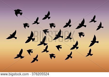 A Flock Of Birds At Sunset. Vector Abstract Silhouette Of Flying Birds. Pattern Of Sunrise And Geese