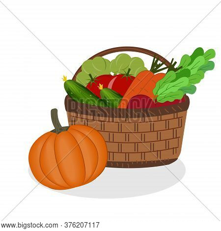 Wicker Basket With Vegetables, Organic Products, Color Vector Illustration, Design, Decoration