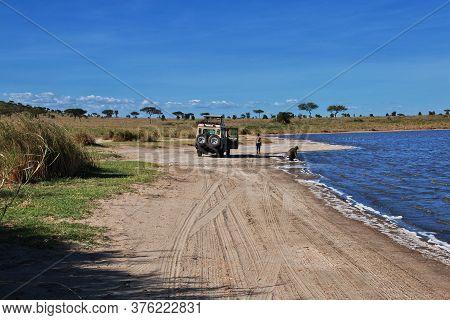 Serengeti / Tanzania - 05 Jan 2017: Safari In Kenia And Tanzania, Africa