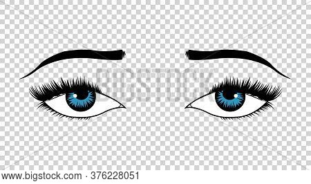 Vector Eyes. Hand Drawn Female Luxury Eye With Perfectly Shaped Eyebrows And Full Eyelashes. The Per