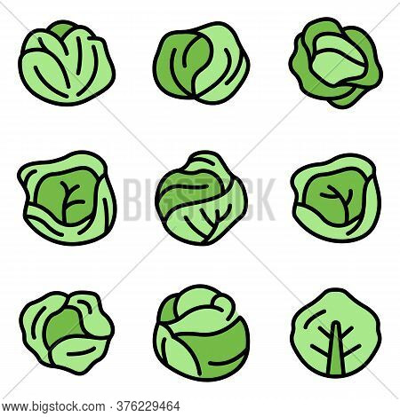 Cabbage Icons Set. Outline Set Of Cabbage Vector Icons Thin Line Color Flat On White