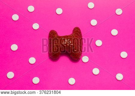 Model Or Figure Of Thyroid Gland, Which Corresponds To Anatomical Original, Is Located In Pink Backg