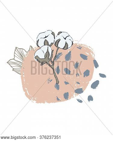 Vector Abstract Hand Drawn Composition With Cotton Branches For Banner, Poster, Card, Cover, Invitat